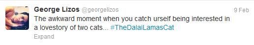 dalai lama's cat tweet