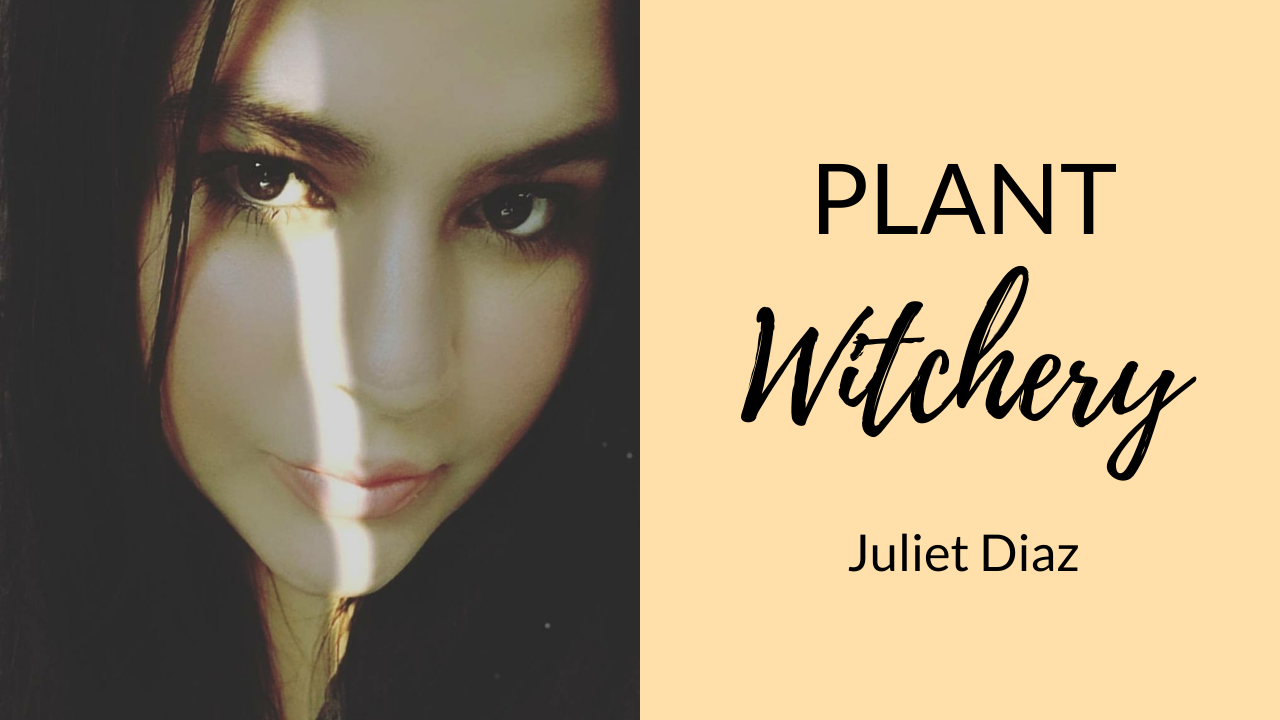 magickal-plants-and-herbs-with-plant-whisperer-juliet-diaz